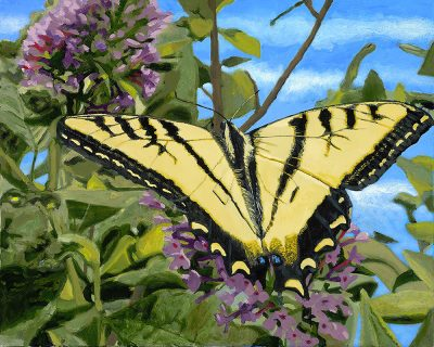 Tiger Swallowtail Oil Painting